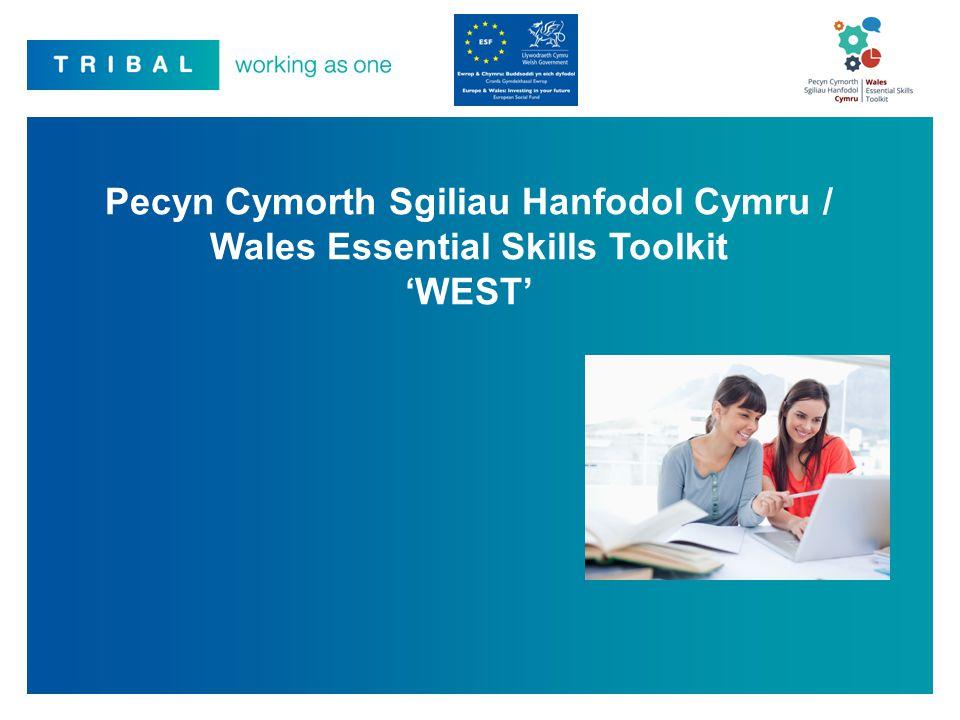 Pecyn Cymorth Sgiliau Hanfodol Cymru / Wales Essential Skills Toolkit 'WEST'