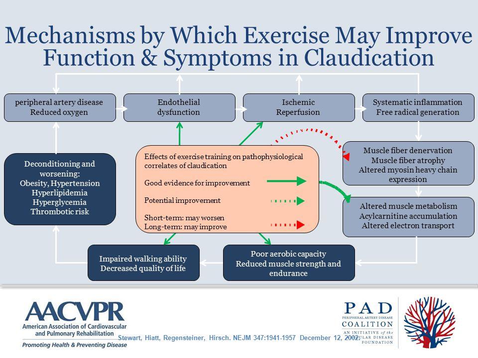 Mechanisms by Which Exercise May Improve Function & Symptoms in Claudication Stewart, Hiatt, Regensteiner, Hirsch.