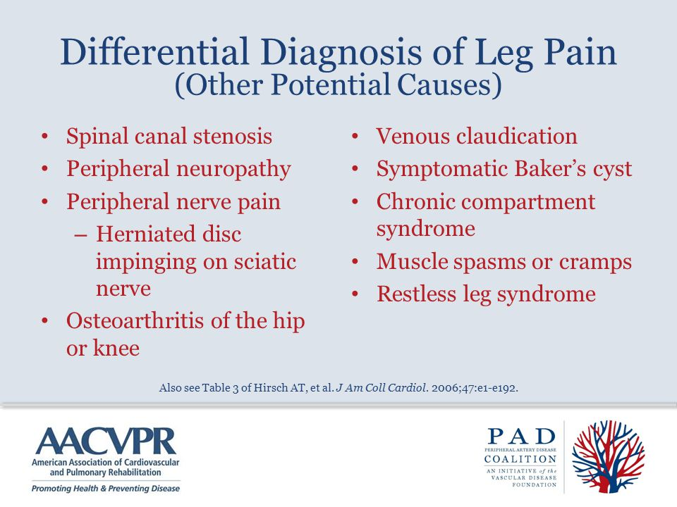 Differential Diagnosis of Leg Pain (Other Potential Causes) Spinal canal stenosis Peripheral neuropathy Peripheral nerve pain – Herniated disc impingi