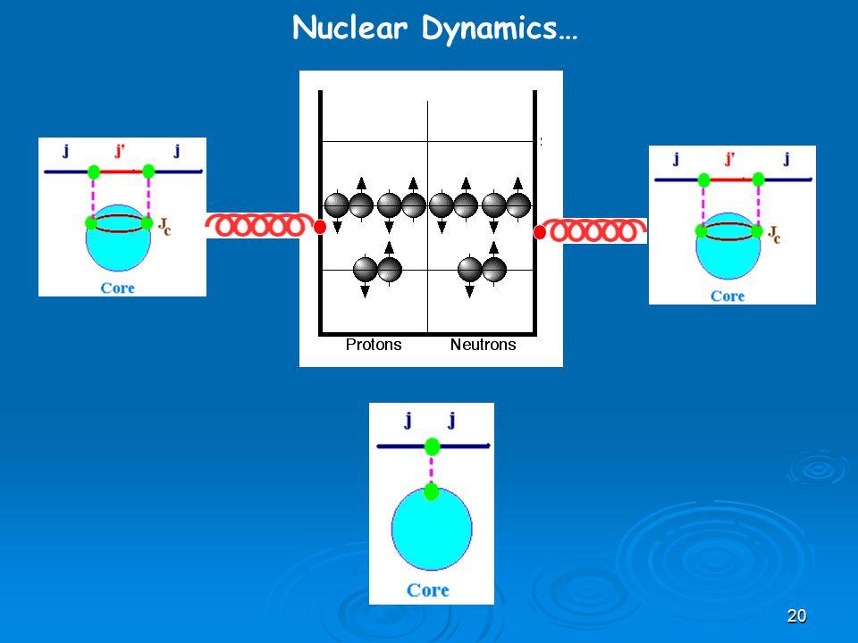 20 Nuclear Dynamics…