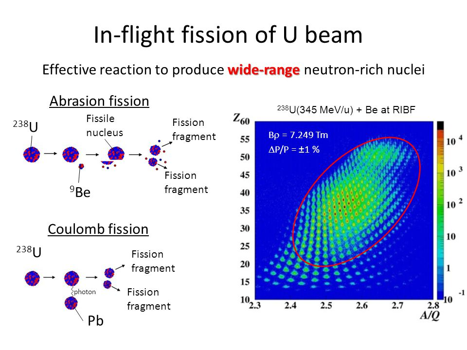 In-flight fission of U beam wide-range Effective reaction to produce wide-range neutron-rich nuclei Abrasion fission 238 U 9 Be Fission fragment Fissi