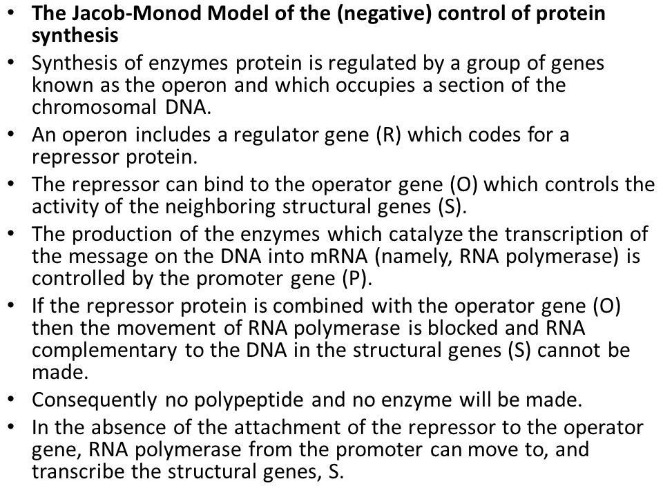 The Jacob-Monod Model of the (negative) control of protein synthesis Synthesis of enzymes protein is regulated by a group of genes known as the operon and which occupies a section of the chromosomal DNA.