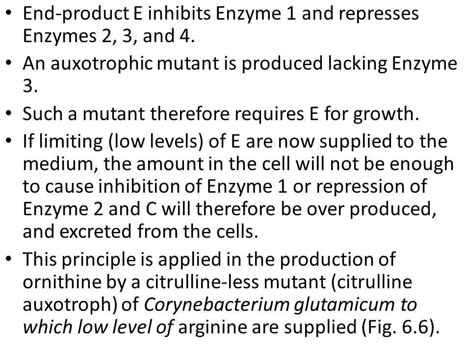 End-product E inhibits Enzyme 1 and represses Enzymes 2, 3, and 4.