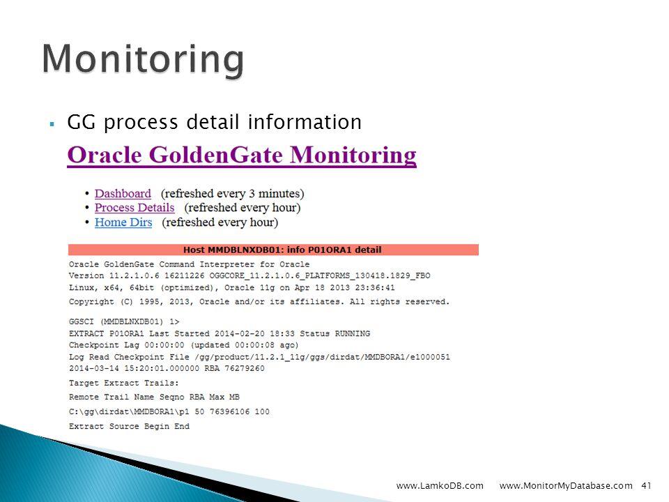  GG process detail information www.LamkoDB.com www.MonitorMyDatabase.com41