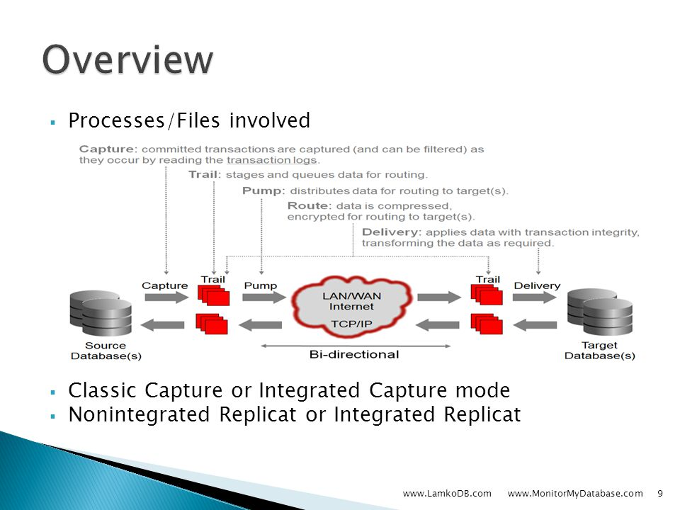  Processes/Files involved  Classic Capture or Integrated Capture mode  Nonintegrated Replicat or Integrated Replicat www.LamkoDB.com www.MonitorMyDatabase.com9