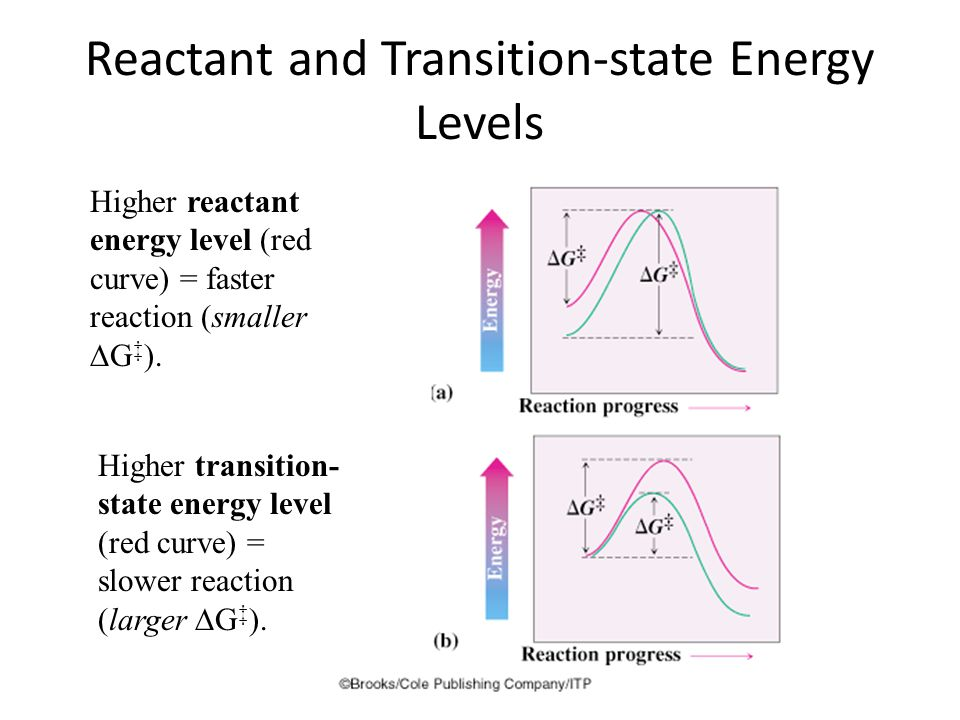 Reactant and Transition-state Energy Levels 5 Higher reactant energy level (red curve) = faster reaction (smaller  G ‡ ).