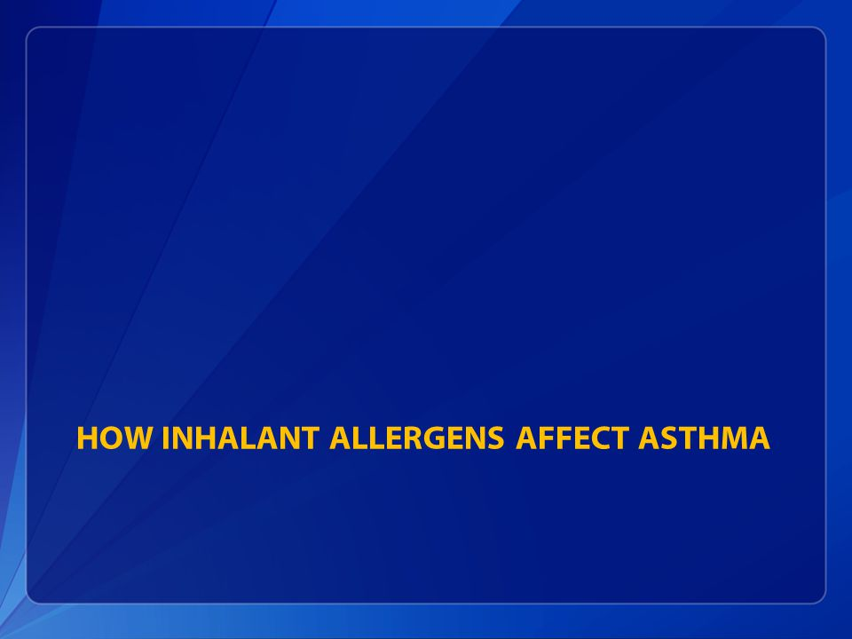 HOW INHALANT ALLERGENS AFFECT ASTHMA