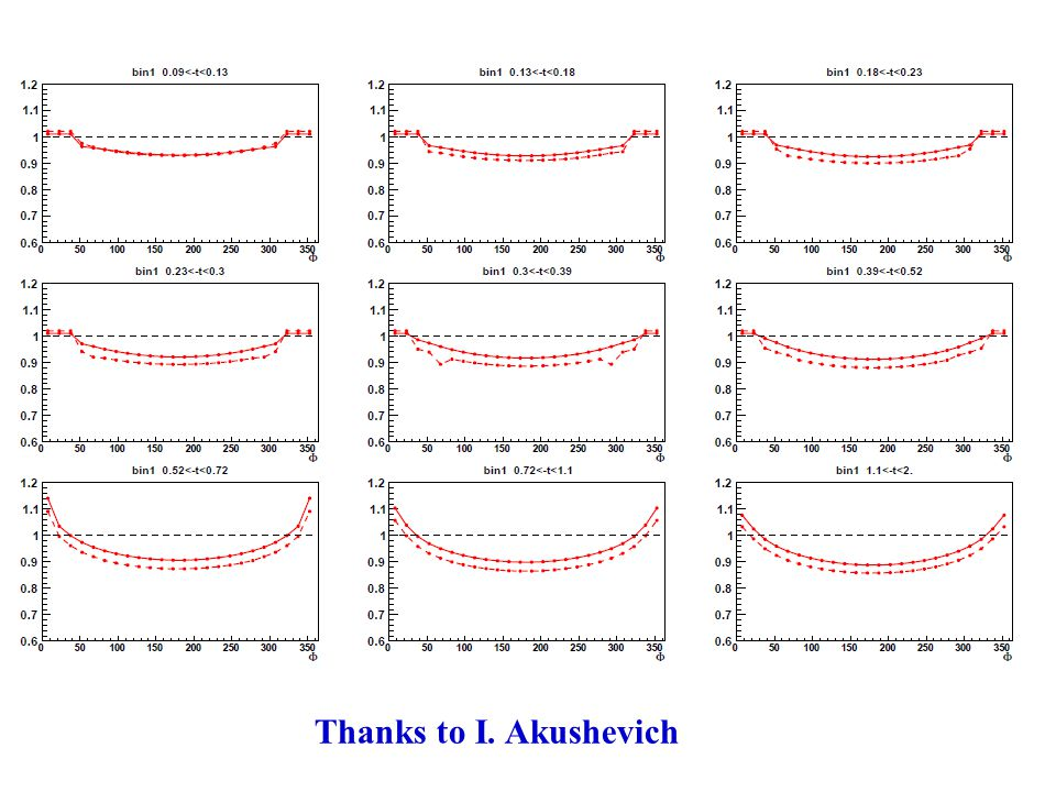 Thanks to I. Akushevich
