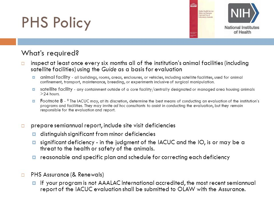 PHS Policy What's required.