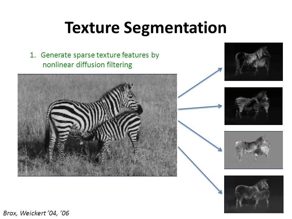 Texture Segmentation 1.Generate sparse texture features by nonlinear diffusion filtering Brox, Weickert '04, '06