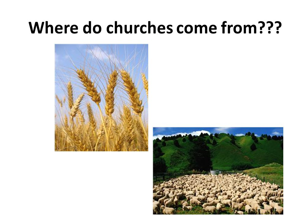 Where do churches come from???
