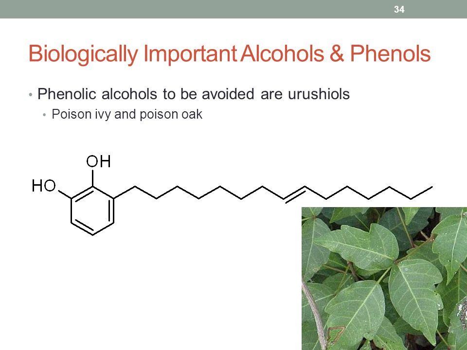 Biologically Important Alcohols & Phenols Phenolic alcohols to be avoided are urushiols Poison ivy and poison oak 34