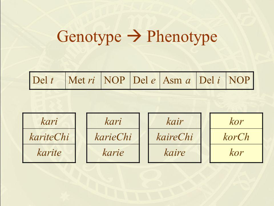 Genotype  Phenotype kari kariteChi karite Del tMet riNOPDel eAsm aDel iNOP kari karieChi karie kair kaireChi kaire kor korCh kor