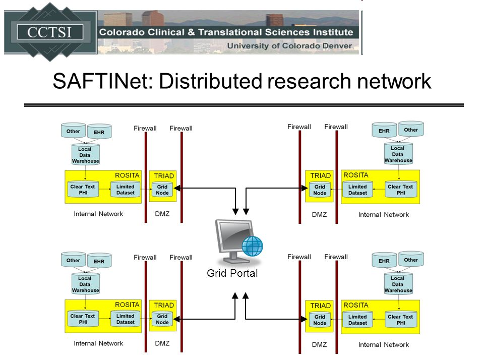SAFTINet: Distributed research network Grid Portal