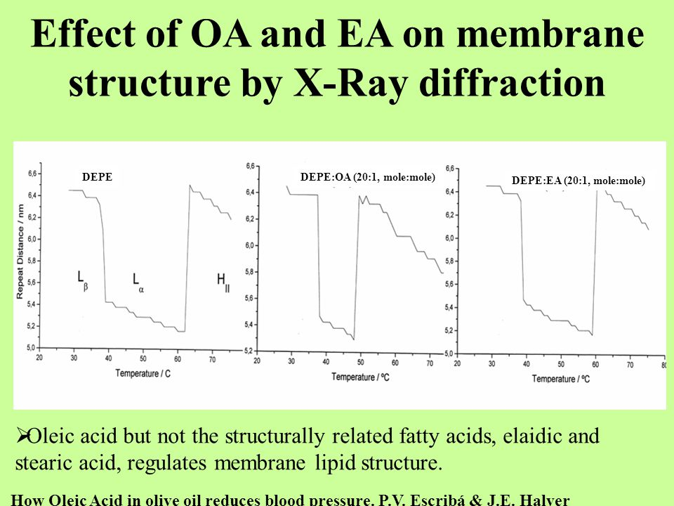 Effect of OA and EA on membrane structure by X-Ray diffraction  Oleic acid but not the structurally related fatty acids, elaidic and stearic acid, re