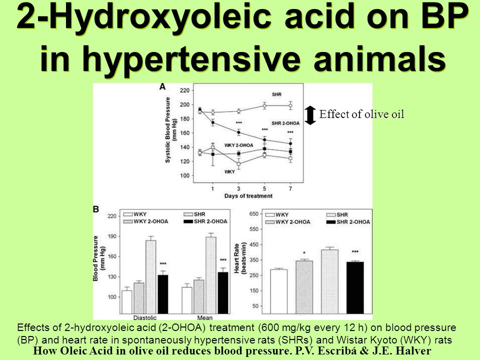 Effects of 2-hydroxyoleic acid (2-OHOA) treatment (600 mg/kg every 12 h) on blood pressure (BP) and heart rate in spontaneously hypertensive rats (SHR