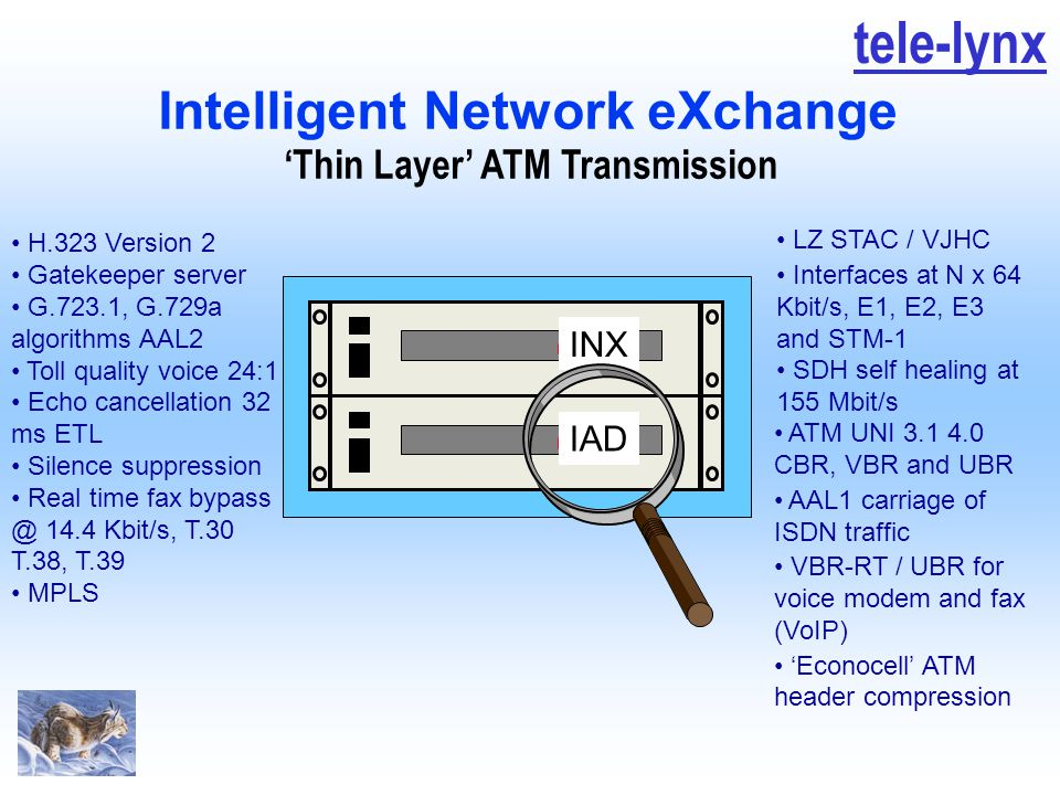 tele-lynx 'Thin Layer' ATM Transmission ATM UNI 3.1 4.0 CBR, VBR and UBR AAL1 carriage of ISDN traffic VBR-RT / UBR for voice modem and fax (VoIP) 'Ec