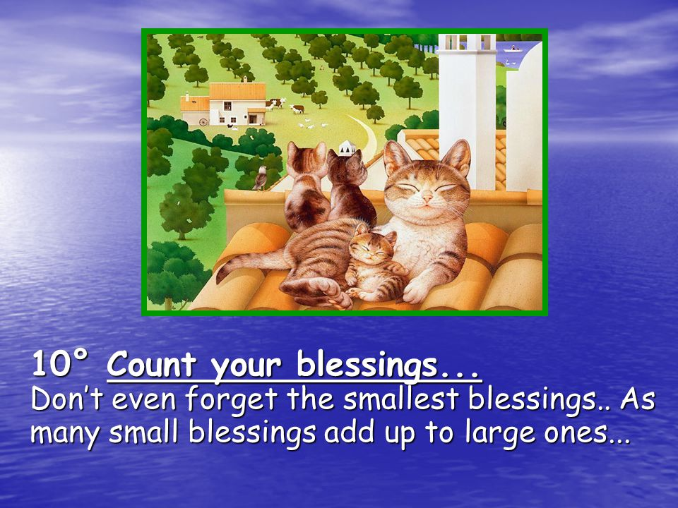 10° Count your blessings... Don't even forget the smallest blessings.. As many small blessings add up to large ones...