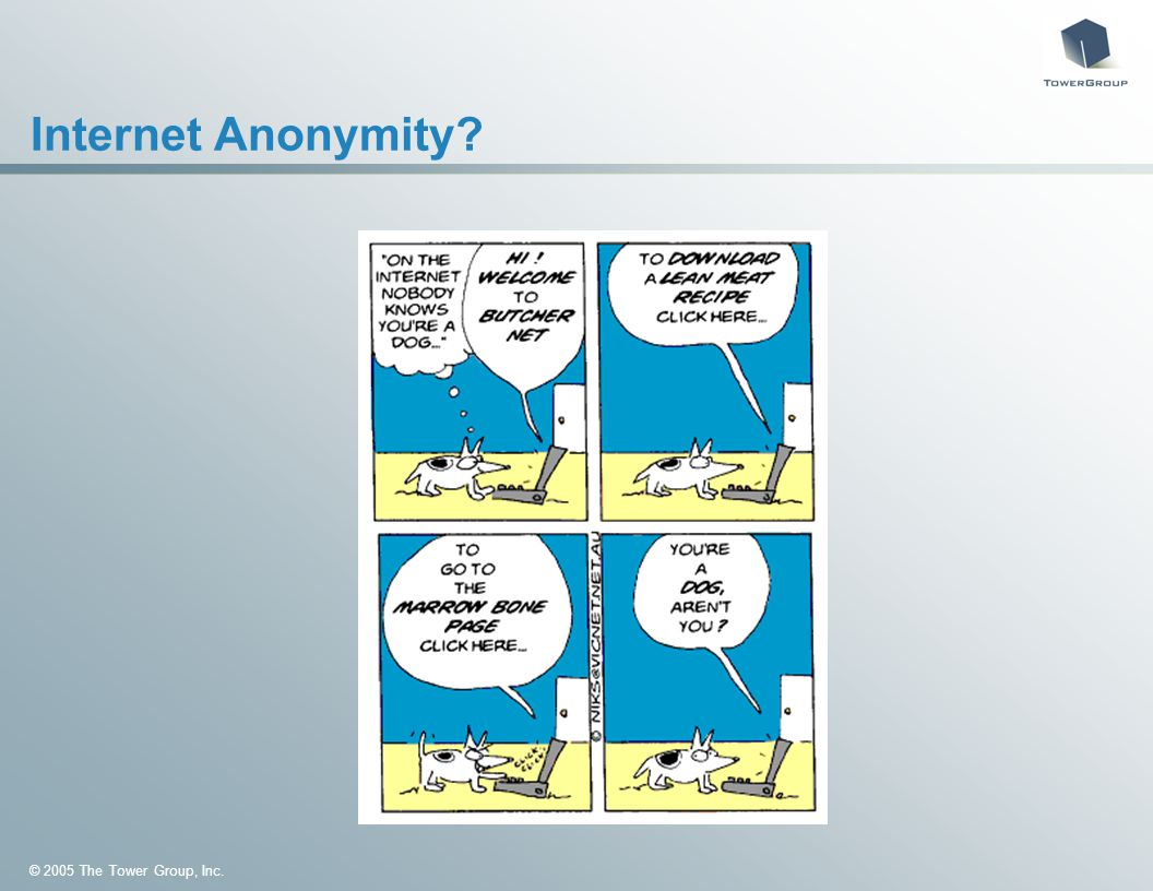 © 2005 The Tower Group, Inc. Internet Anonymity