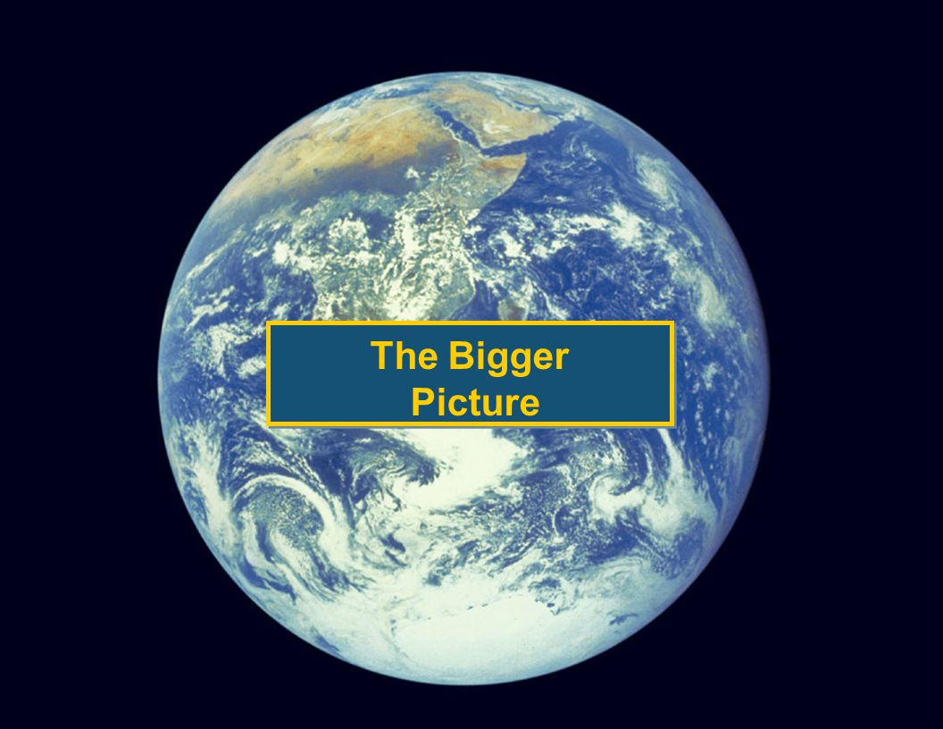 © 2005 The Tower Group, Inc. The Bigger Picture