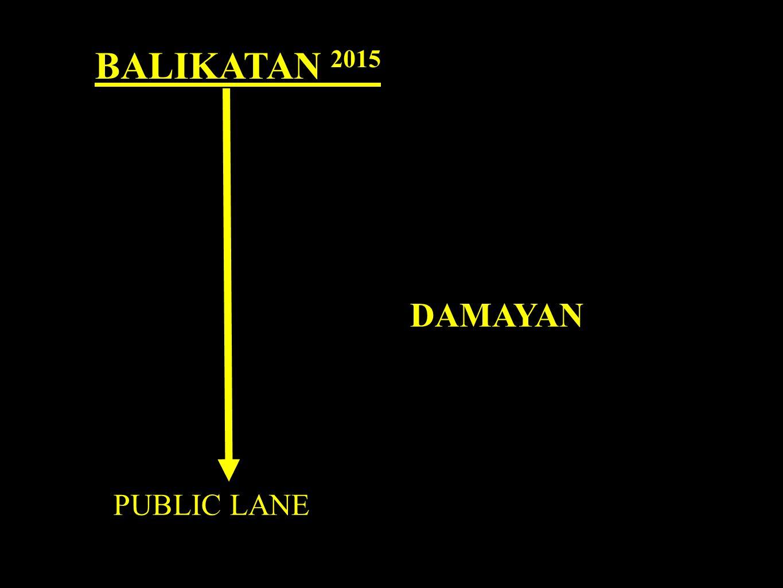 BALIKATAN 2015 PUBLIC LANE DAMAYAN