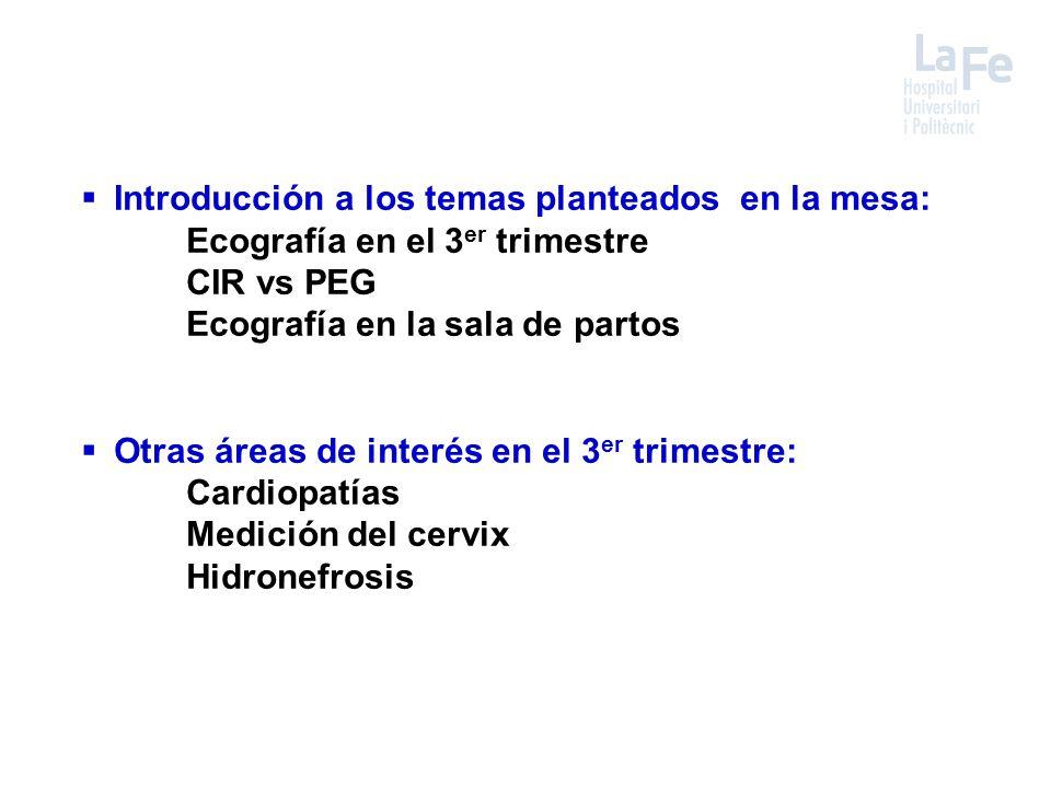  Introducción a los temas planteados en la mesa: Ecografía en el 3 er trimestre CIR vs PEG Ecografía en la sala de partos  Otras áreas de interés en el 3 er trimestre: Cardiopatías Medición del cervix Hidronefrosis