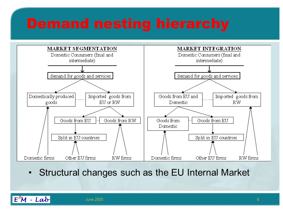 June 20058 Demand nesting hierarchy Structural changes such as the EU Internal Market