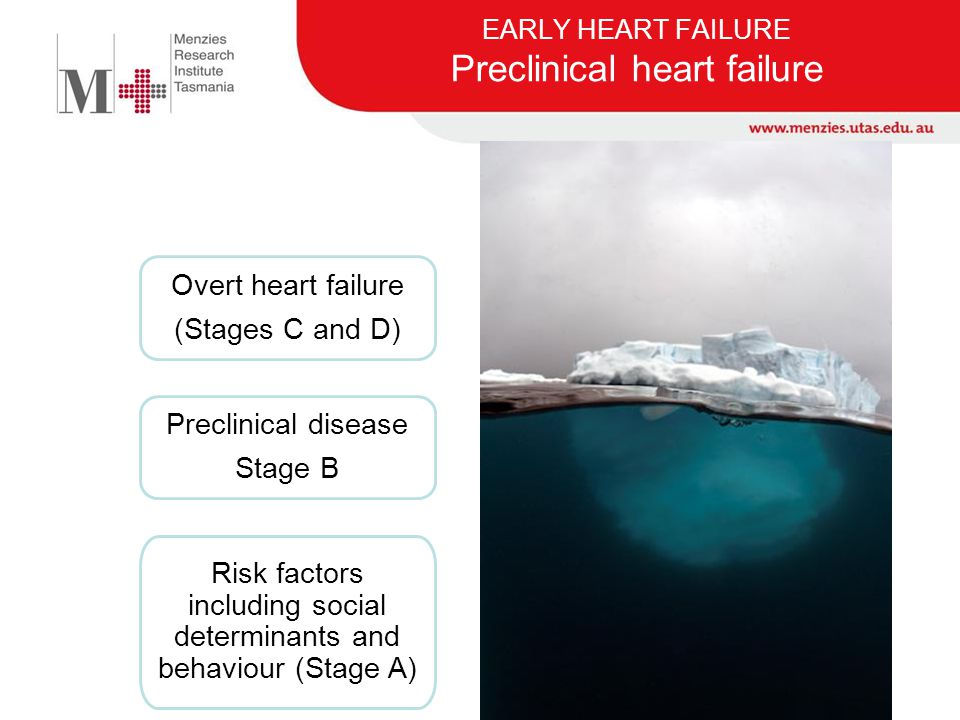 EARLY HEART FAILURE Screening for HF Prevalence: 10% (> 65 yrs) At June 2010, there were 79,100 people aged 65 years and over in Tasmania - 15.6% of the population Can we afford to screen ~80,000 people in order to find ~8,000 with HF?