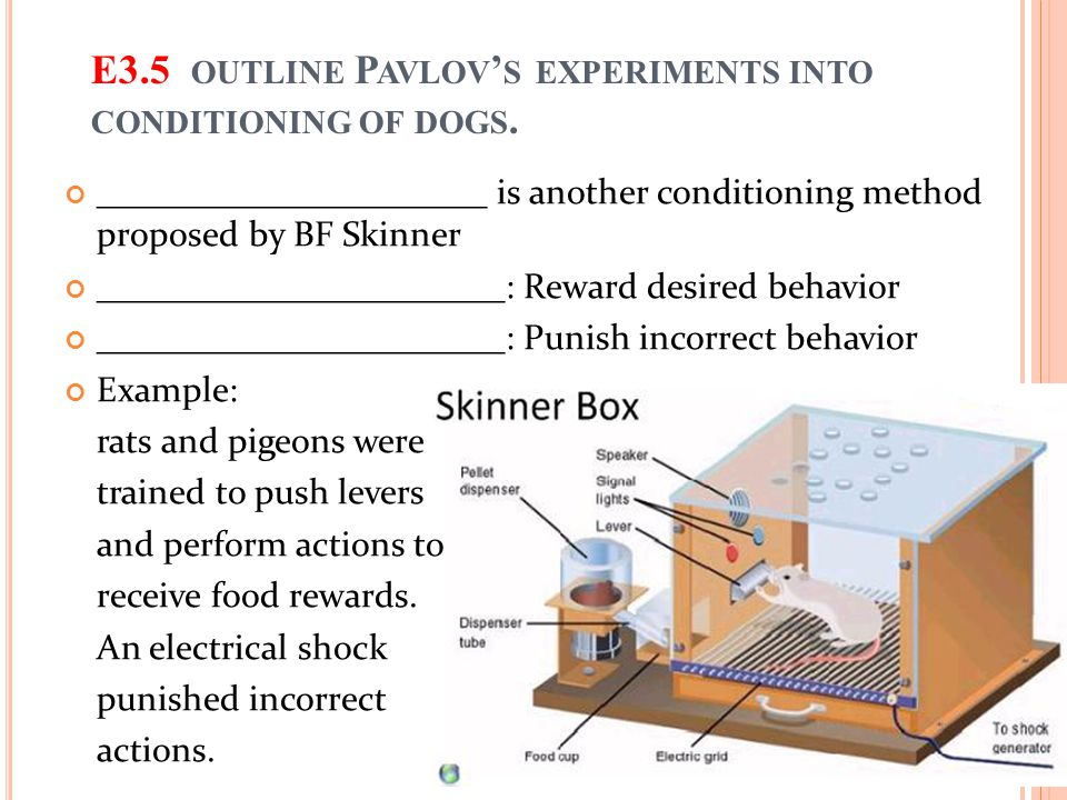 E3.5 OUTLINE P AVLOV ' S EXPERIMENTS INTO CONDITIONING OF DOGS.