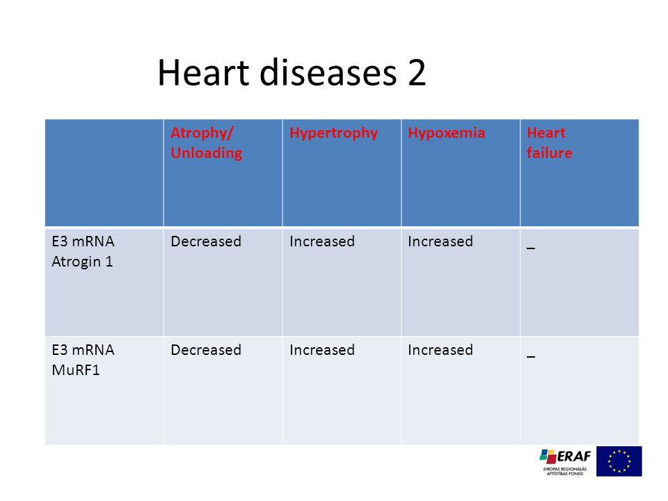 Heart diseases 2 Atrophy/ Unloading HypertrophyHypoxemiaHeart failure E3 mRNA Atrogin 1 DecreasedIncreased _ E3 mRNA MuRF1 DecreasedIncreased _