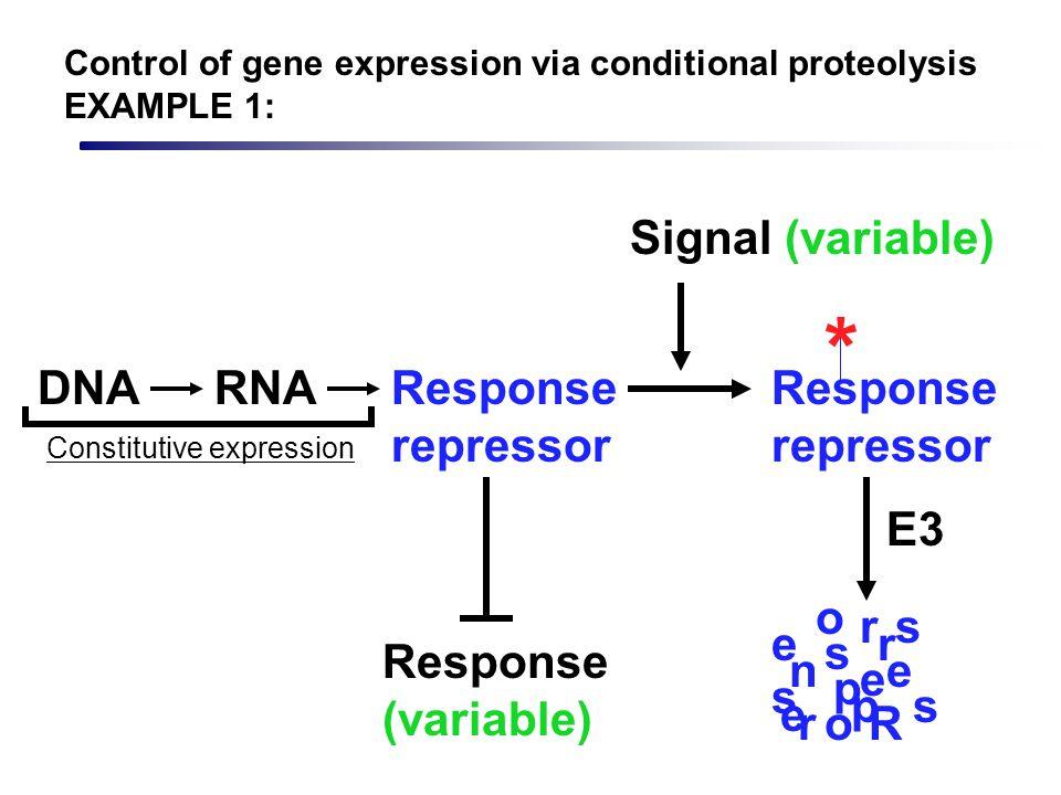 Response repressor * Signal (variable) Response (variable) DNARNAResponse repressor Constitutive expression R e s p n s e r o o s s e e r r p E3 Contr