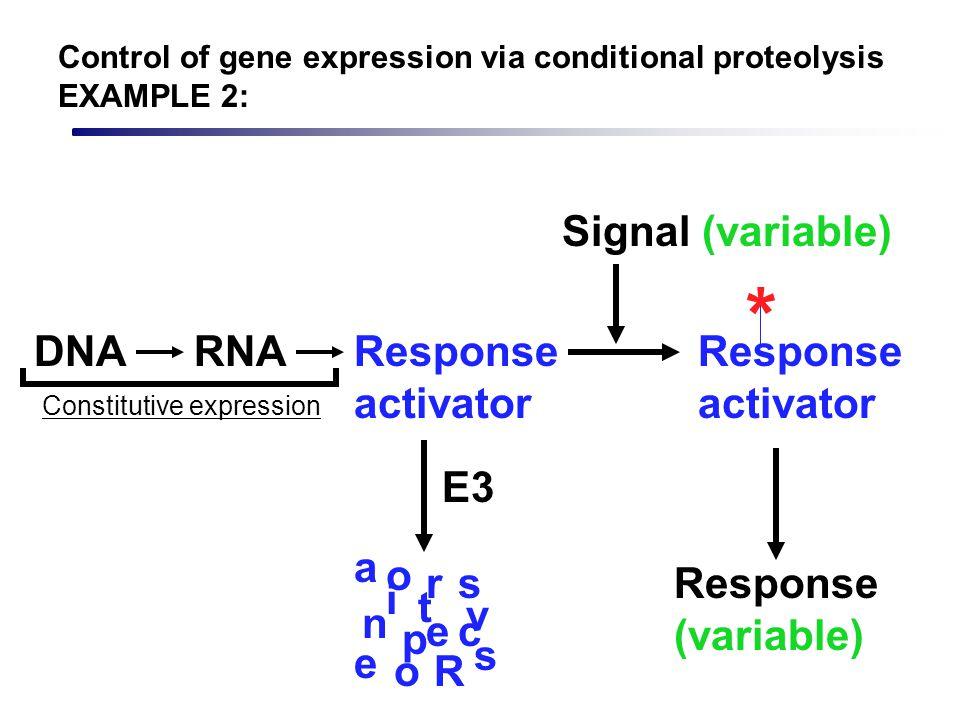 Response activator * Signal (variable) Response (variable) DNARNAResponse activator Constitutive expression R e s p n s e a c t i v r o o E3 Control o