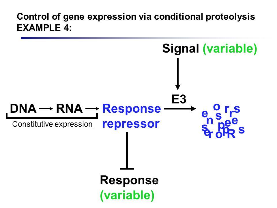 Response repressor Response (variable) DNARNA Constitutive expression Signal (variable) E3 R e s p n s e r o o s s e e r r p Control of gene expressio