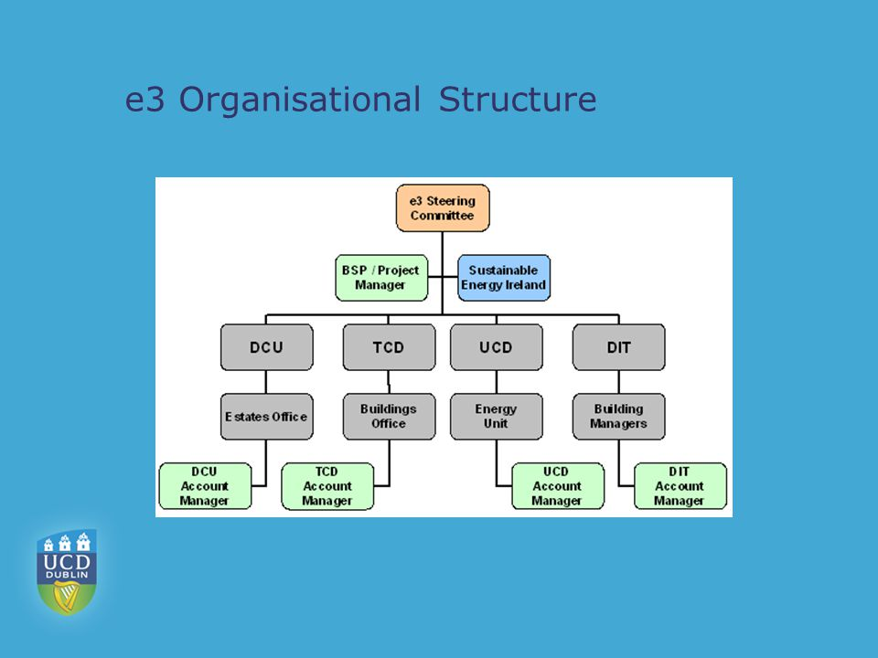 e3 Organisational Structure