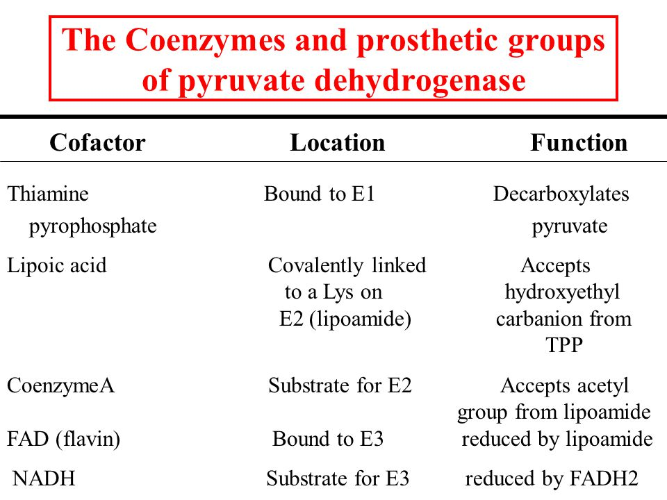 The Coenzymes and prosthetic groups of pyruvate dehydrogenase Cofactor Location Function Thiamine Bound to E1 Decarboxylates pyrophosphate pyruvate Lipoic acid Covalently linked Accepts to a Lys on hydroxyethyl E2 (lipoamide) carbanion from TPP CoenzymeA Substrate for E2 Accepts acetyl group from lipoamide FAD (flavin) Bound to E3 reduced by lipoamide NADH Substrate for E3 reduced by FADH2
