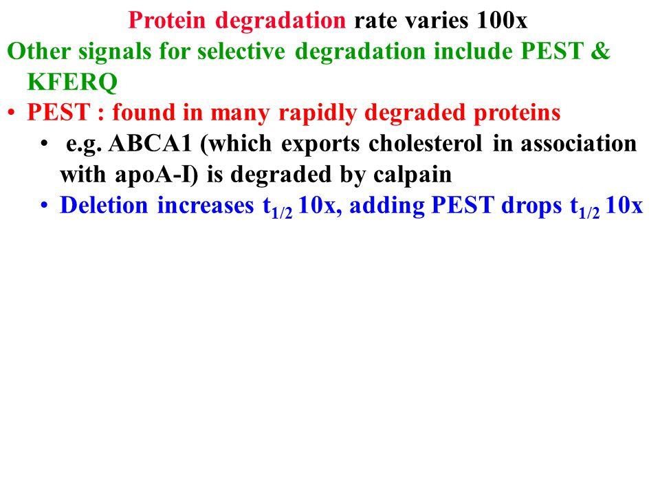 Protein degradation rate varies 100x Other signals for selective degradation include PEST & KFERQ PEST : found in many rapidly degraded proteins e.g.