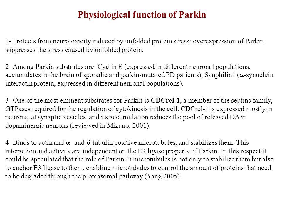Parkin-mediated clearance of mitochondria occurs via autophagic mechanisms