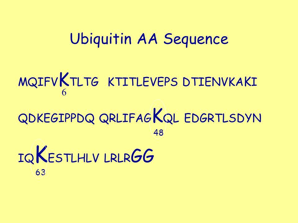 Ubiquitin AA Sequence MQIFV K TLTG KTITLEVEPS DTIENVKA K I QDKEGIPPDQ QRLIFAG K QL EDGRTLSDYN IQ K ESTLHLV LRLR GG 48 63 6