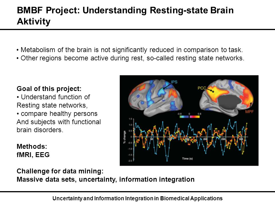 Uncertainty and Information Integration in Biomedical Applications BMBF Project: Understanding Resting-state Brain Aktivity Metabolism of the brain is not significantly reduced in comparison to task.