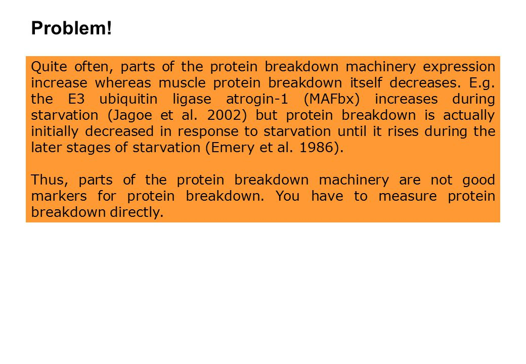 Quite often, parts of the protein breakdown machinery expression increase whereas muscle protein breakdown itself decreases. E.g. the E3 ubiquitin lig