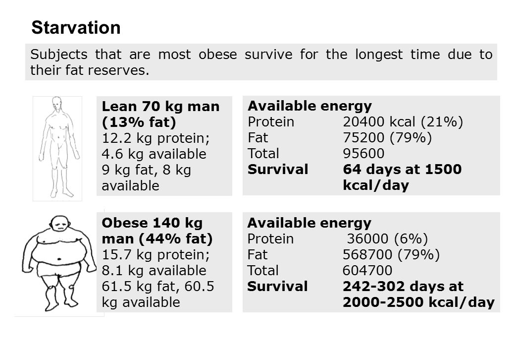 Subjects that are most obese survive for the longest time due to their fat reserves. Starvation Available energy Protein 20400 kcal (21%) Fat75200 (79