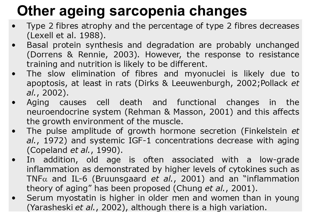 Other ageing sarcopenia changes Type 2 fibres atrophy and the percentage of type 2 fibres decreases (Lexell et al. 1988). Basal protein synthesis and