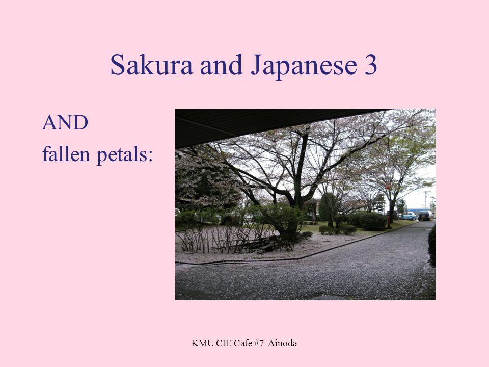 KMU CIE Cafe #7 Ainoda Sakura and Japanese 3 AND fallen petals: