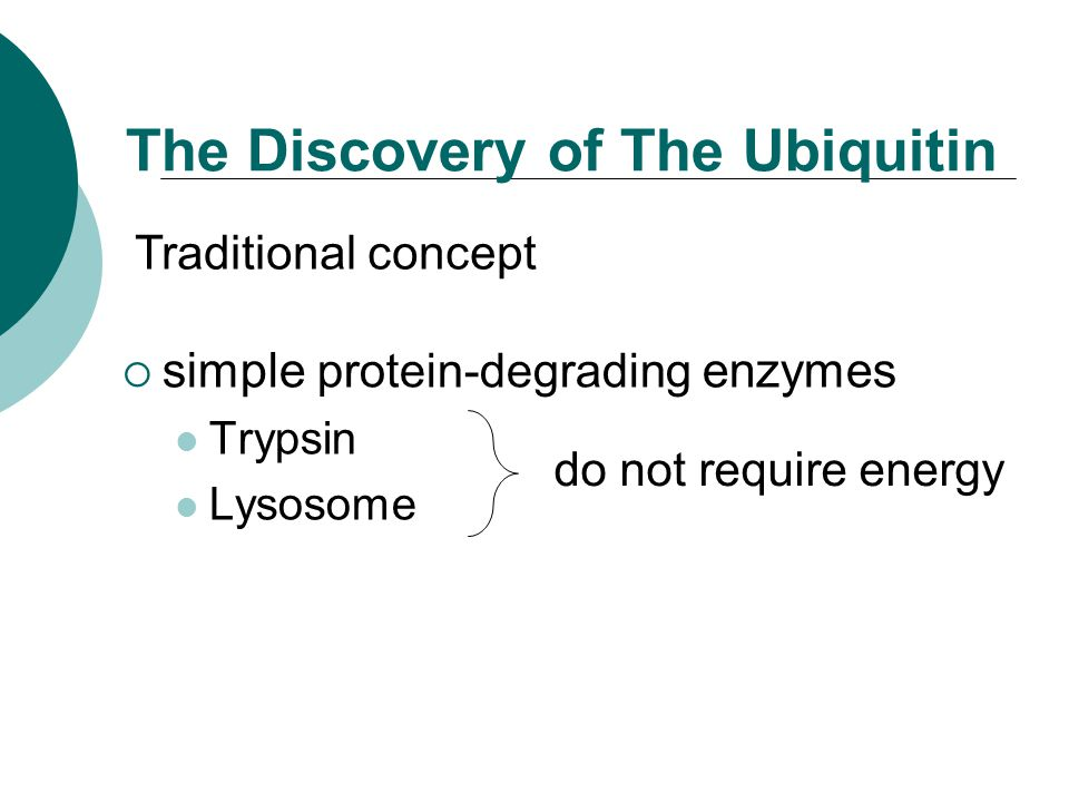 The Discovery of The Ubiquitin  simple protein-degrading enzymes Trypsin Lysosome do not require energy Traditional concept