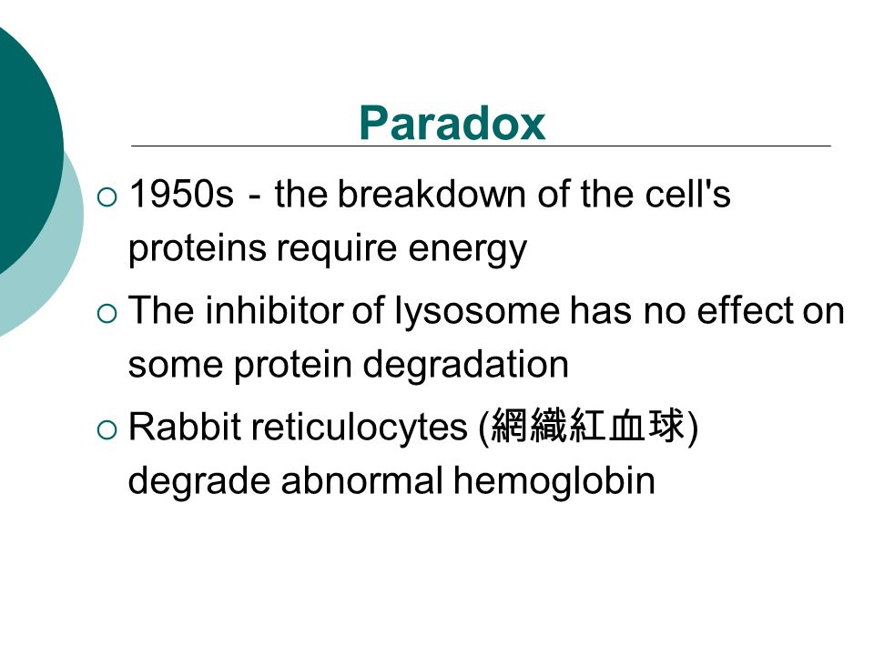 Paradox  1950s - the breakdown of the cell s proteins require energy  The inhibitor of lysosome has no effect on some protein degradation  Rabbit reticulocytes ( 網織紅血球 ) degrade abnormal hemoglobin