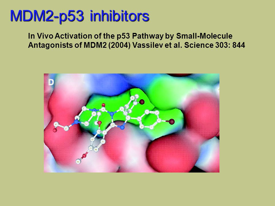 MDM2-p53 inhibitors In Vivo Activation of the p53 Pathway by Small-Molecule Antagonists of MDM2 (2004) Vassilev et al. Science 303: 844