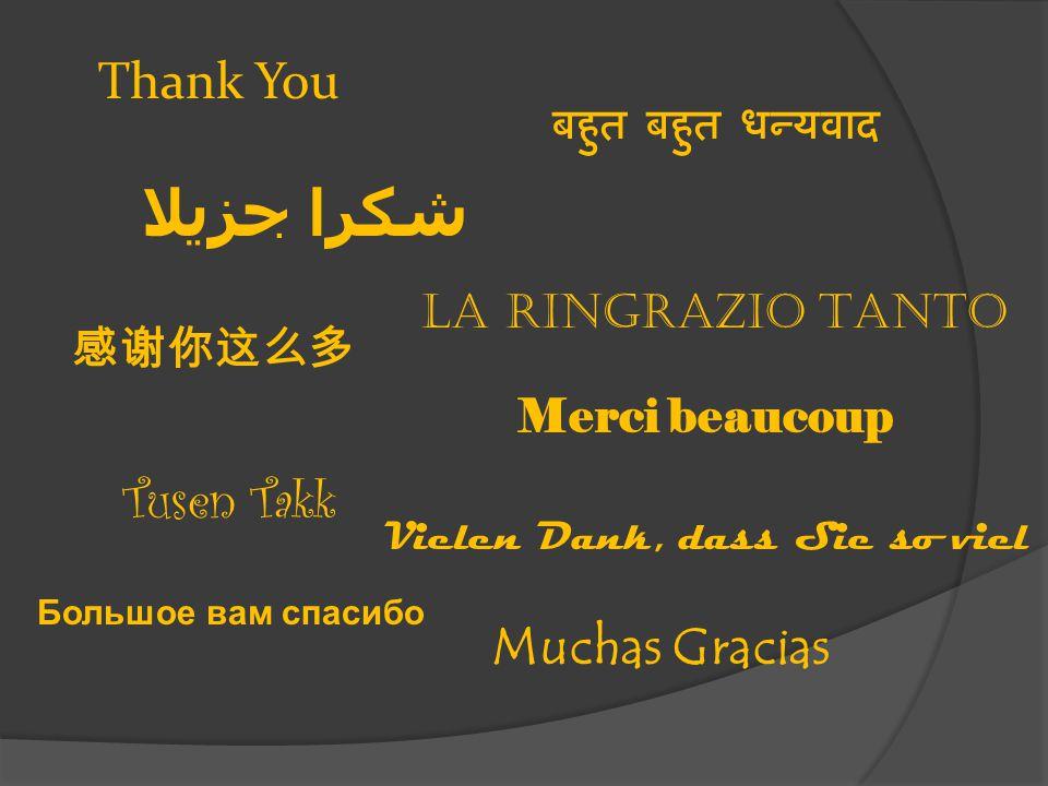 Thank You شكرا جزيلا La Ringrazio Tanto Tusen Takk Merci beaucoup Vielen Dank, dass Sie so viel Muchas Gracias 感谢你这么多 Большое вам спасибо बहुत बहुत धन