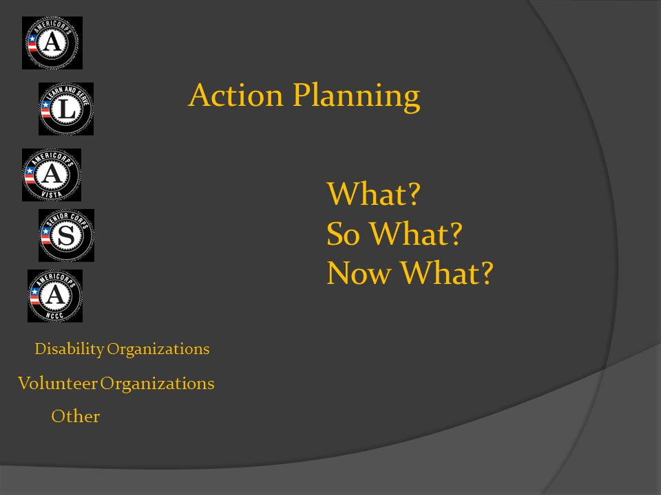 Disability Organizations Volunteer Organizations Other Action Planning What? So What? Now What?