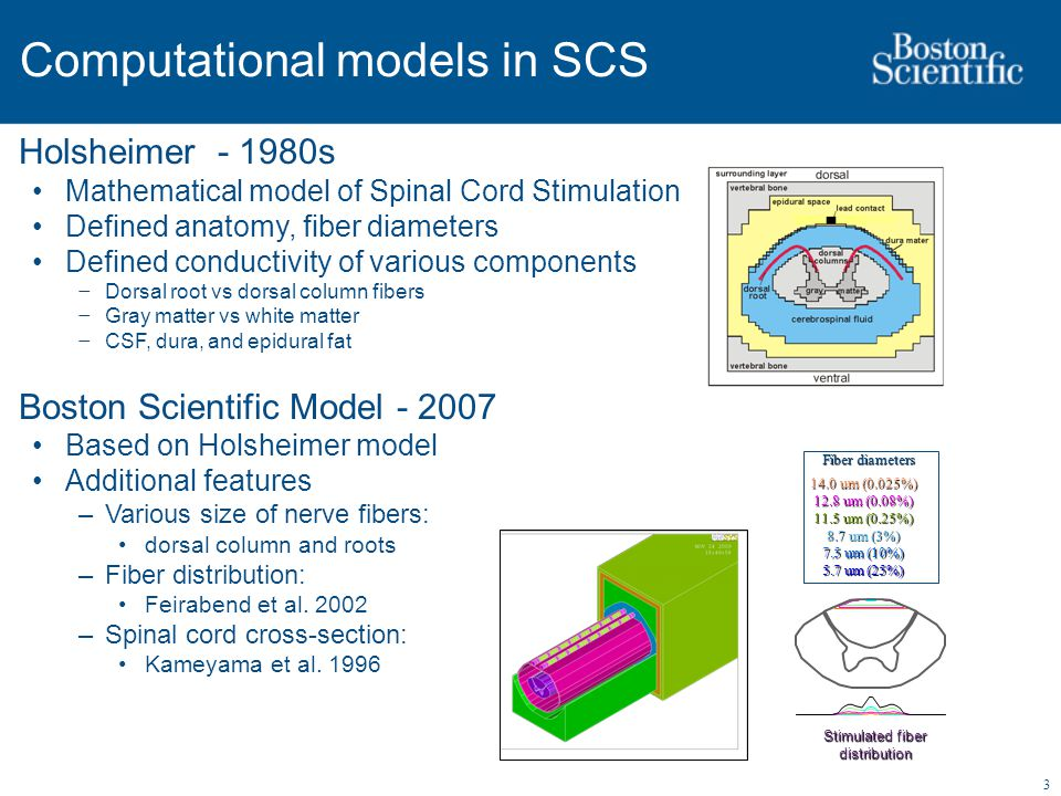 3 Computational models in SCS Holsheimer - 1980s Mathematical model of Spinal Cord Stimulation Defined anatomy, fiber diameters Defined conductivity of various components − Dorsal root vs dorsal column fibers − Gray matter vs white matter − CSF, dura, and epidural fat Boston Scientific Model - 2007 Based on Holsheimer model Additional features –Various size of nerve fibers: dorsal column and roots –Fiber distribution: Feirabend et al.