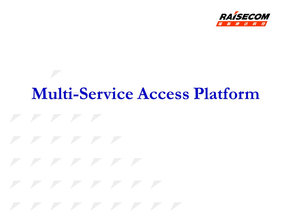 Multi-Service Access Platform